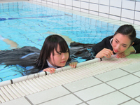Wet Girls 08AB1 set