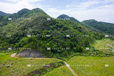 空撮/やんばるの山々 Y1234